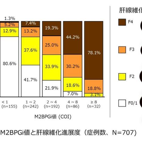 M2BPGiは、肝線維化の進展度を予測する新しいマーカーです。
